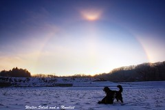The halo (waltersoluh) Tags: morning winter dog snow nature sunrise landscape halo rs fpg visiongroup theunforgettablepictures platinumheartaward magicunicornverybest adrinnesmagicalmoments