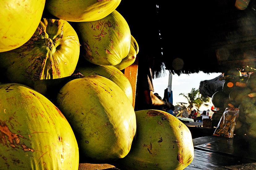 soteropoli.com fotos fotografia salvador bahia verao summer 2010 by tunisio (6)