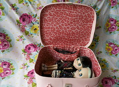 the perfect blythe case found thrifting