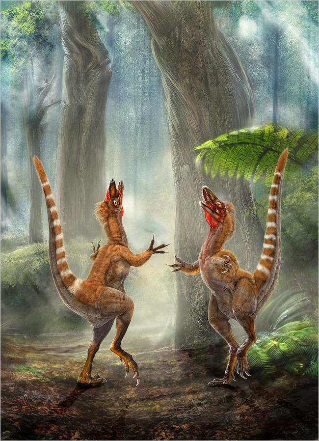 Orange stripey dinosaurs? Fossil feathers reveal their