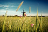 (Jinna van Ringen) Tags: netherlands windmill dutch amsterdam landscape photography bokeh ringen wideangle elusive van actions sigma1020mm jorinde jinna elusivephoto jorindevanringen jinnavanringen chanderjagernath jagernath jagernathhaarlem