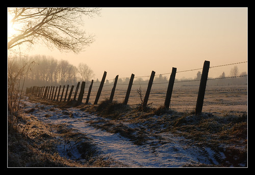 Chemin blanc au couchant
