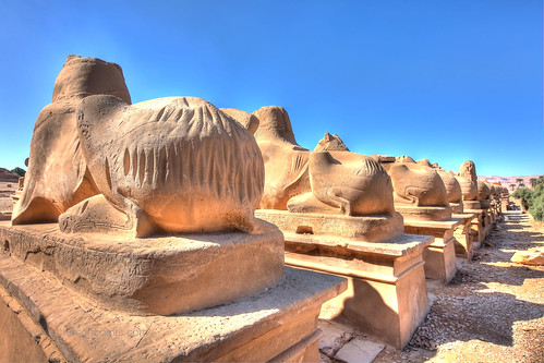 Pilgrim Gouges Avenue of the Sphinxes