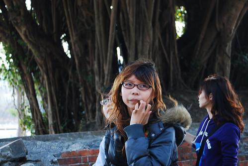 台南黑面琵鷺GO-2010020345