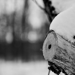 wood & snow (dongga BS) Tags: wood schnee blackandwhite bw snow square 11 sw schwarzweiss holz quadratisch canoneos50d ef35mmf14lusm