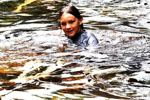 Peregrine at Florence Falls