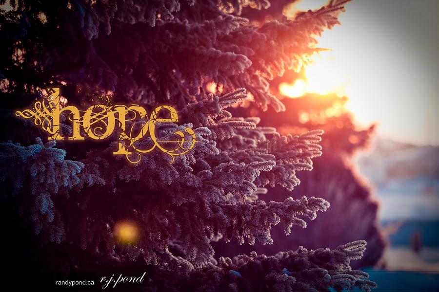 ~ 56/365 Hope ~