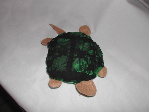 2tone turtle top by rubberduckiemom.