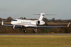 CS-DKG - Netjets Europe - Gulfstream G550 - Luton - 091126 - Steven Gray - IMG_4691