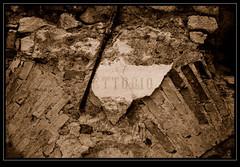 ref_ETTORIO (Bytho) Tags: ruins sepiatone rovine abandonedplaces oldmine valganna postiabbandonati minieravalvassera