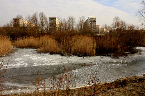 Icy pond and flats
