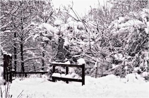 Nevicata 10 marzo