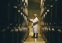 9 temas sin importancia en el vino argentino
