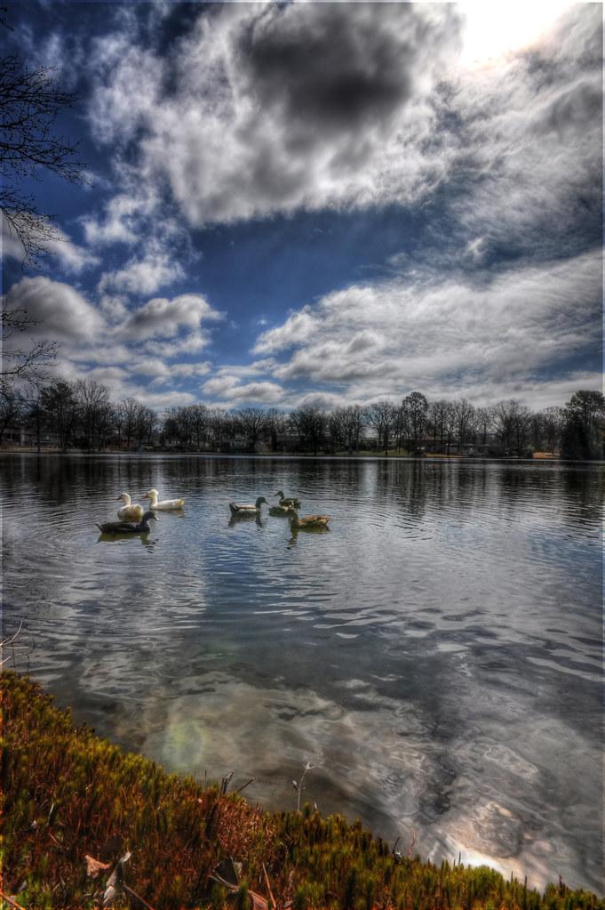Sunny Lake 6