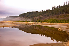 Tranquil Home Creek (kmanohar) Tags: california northerncalifornia worldheritagesite westcoast humboldtcounty pacificcoast californiacoast redwoodnationalpark goldbeach northerncaliforniacoast temperaterainforest prairiecreekstatepark prairiecreek redwoodpark prairiecreekredwoods goldbluffs redwoodcoast goldbluffsbeach humboldtcountyca humboldtcountycalifornia prairiecreekredwoodsstatepark redwoodsstatepark pacificrainforest klamathcalifornia homecreek prairiecreekpark internationalbiospherereserve redwoodpreserve reflectivesymmetry californiarainforest northwestrainforest symmetryinreflection redwoodreserve cascadiacoast