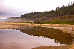Tranquil Home Creek (kmanohar) Tags: california northerncalifornia worldheritagesite westcoast humboldtcounty pacificcoast californiacoast redwoodnationalpark goldbeach northerncaliforniacoast temperaterainforest prairiecreekstatepark prairiecreek redwoodpark prairiecreekredwoods goldbluffs redwoodcoast goldbluffsbeach humboldtcountyca humboldtcountycalifornia prairiecreekredwoodsstatepark redwoodsstatepark pacificrainforest klamathcalifornia homecreek prairiecreekpark internationalbiospherereserve redwoodpreserve reflectivesymmetry californiarainforest northwestrainforest symmetryinreflection redwoodreserve cascadiacoast