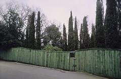 green fence (Evgeny Chulyuskin) Tags: street travel green film 35mm fence slide ps ukraine yashicat5 crimea cypresses compact sensia yashicat4 simeiz