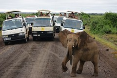 Amboseli (Kenya) (Vecaks.narod.ru) Tags: kenya amboseli