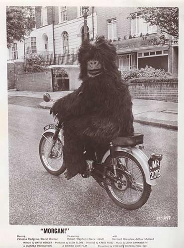 MORGAN (1966) Still