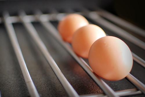 fuga de huevos