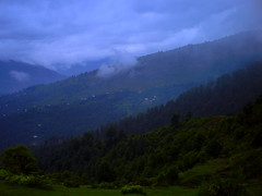 My Kashmir (M.Rizwan Rafique) Tags: b pakistan summer mountains tree green nature beautiful beauty clouds forest evening stream village natural rivers kashmir heavenonearth greenry paksitan azadkashmir