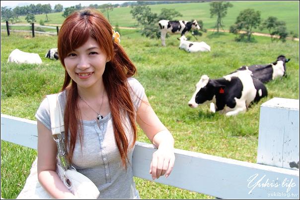 [台東-遊]*初鹿牧場~鮮奶好好喝.哞哞哞
