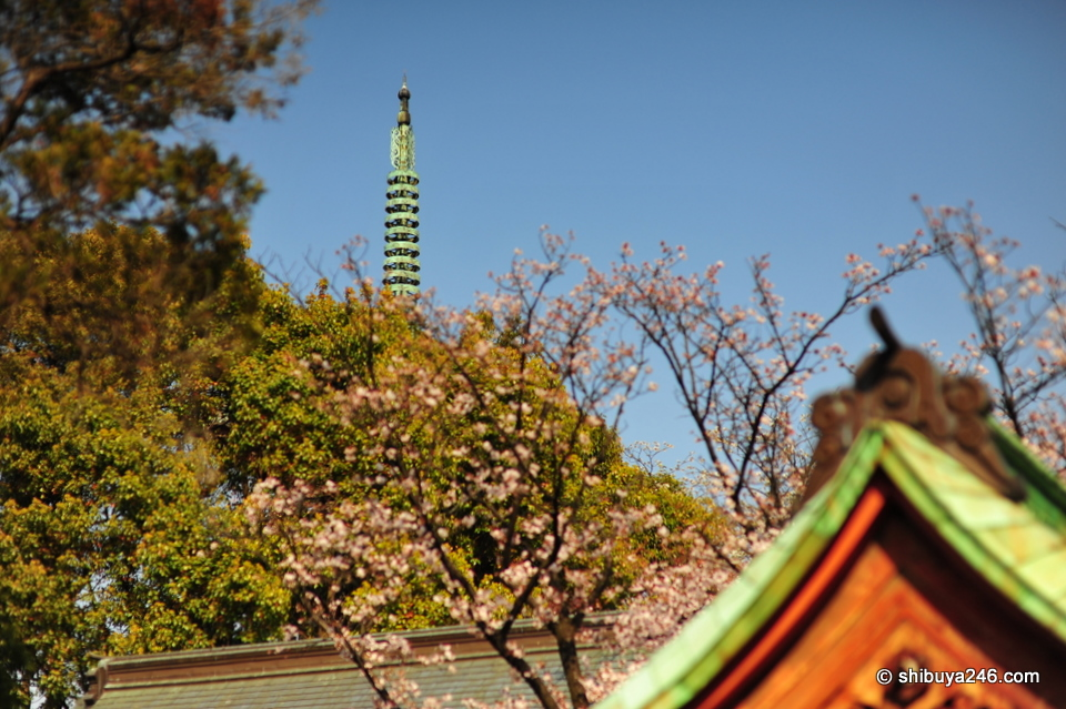 A view of the Five Story Pagoda in the background from the grounds of Toshogu Shrine.