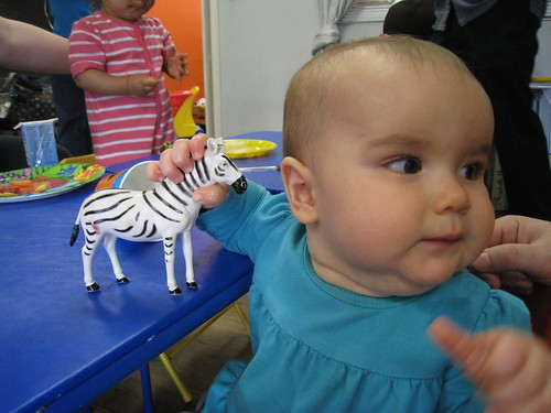 Lucy shared her cake with the zebra.