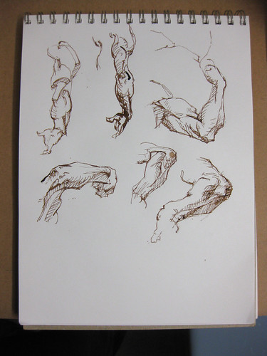 ink sketches of arms