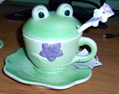 Frog Tea Set - Girl