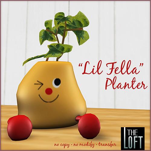 The Loft-Lil Fella Planter
