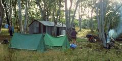 Ingeegoodbee Hut, 1984 (NettyA) Tags: camping film 35mm tents australia slide victoria huts campfire bushwalking 1984 scanned slides 1980s eucalypts campsites thepilot ingeegoodbeehut janettetomsett bushfridge