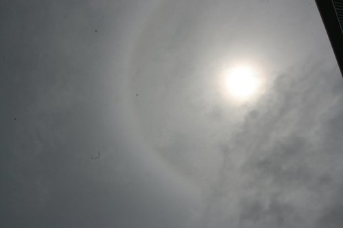 365/105: Sun Spot