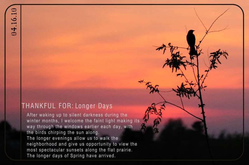 Weekly Gratitude - Longer Days [spring]