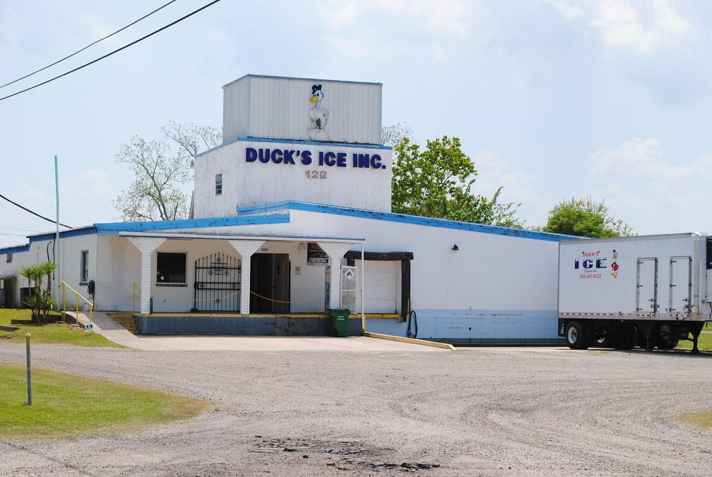 duck's ice