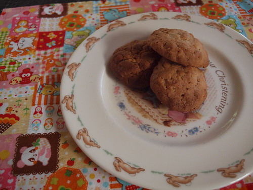 raisin and oat cookies