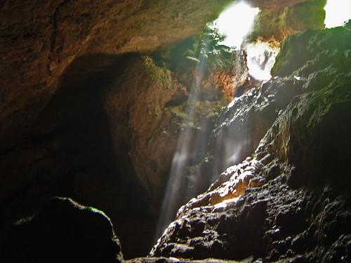 Bat cave - Nepal