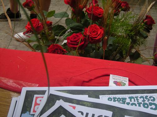 Sant Jordi 2010 002