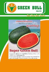 watermelon seed super green bull  16 k (WatermelonSeeds) Tags: thailand cucumber watermelon winner bittergourd chilli brand jumbojet pumkin hoa rau greentiger cnh greenocean thailan pumkinseeds qu watermelonseeds marigoldseeds cc greenbull c cucumberseeds duahau htging dahu chatluongcao raucuqua cbit dualeo vnth dachut htgingdahu daleo duachuot laif1 wwwgreenbullseedcom gingcytrng raunqu cydahu quthailan htginghoa ccloi greenbull84 thailanchatluongcao hatgionglaif1 hatgiongbidao thongthae waxgourdseeds hatgiongbido grandvangthong supergreenbull wwwhatgiongdauhaucom hatgiongdualeo seven99 hatgionghoacucvantho phuphanphet cacloai htgingtchun nhpkhutthilan wwwgrandbizcom greenbullseed trngloi dahucbit ccloirau grandmekong greentiger51 wwwhatgiongduahaucom