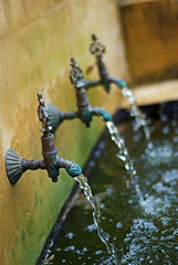 Water of life (.donelle) Tags: water dof australia taps flowing centralcoast theentrance challengeyouwinner nzfmx