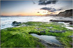 Happy Mossy Monday Morning (Extra Medium) Tags: sunset santabarbara clouds moss tidepools ucsb islavista goleta campuspoint