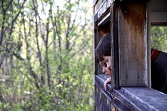 looking for wildlife in the sanctuary (djtomdog) Tags: wildlife sanctuary canoemeadows