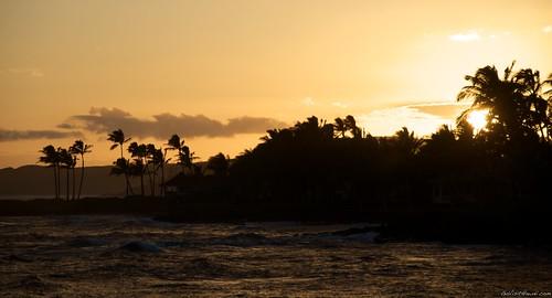 kauai2010 355