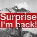 Surprise I'm back