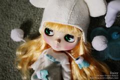 green-eyed Daisy