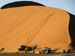 More Tourists on Dune 45, Namibia (Marie-Marthe Gagnon) Tags: africa trees shadow tree cars marie 30 big high sand desert dunes marthe dune tourists second 100 sesriem namibia soe famine sossusvlei namib deadvlei vlei gagnon ngm supershot dailydozen hiddenvlei ultimateshot mpdquebec geoafrica mariegagnon mariemarthegagnon