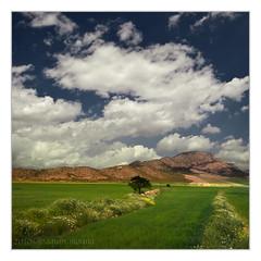 Los Royos V (muliterno) Tags: murcia campos losroyos