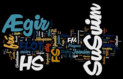 FM/JM 2010 Wordle