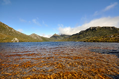 Dove Lake and Cradle Mountain, Tasmania (Roy Lathwell) Tags: park mountain lake water landscape nikon dove australia national tasmania tas cradle d90