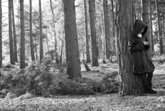 In The Woods_3 (Luke_Williams) Tags: trees winter light summer bw woman sunlight girl fashion project season lens outside photography 50mm george model woods nikon exposure shoot williams angle natural luke wide location 365 recent 2010 d60 2011